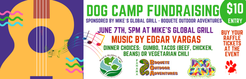 dog camp fundraising (5).png