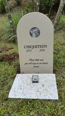 Pet Headstone, Sandblasted and Laser Ingraved Image of Pet