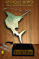 Stage Blasted Glass Award / Trophy